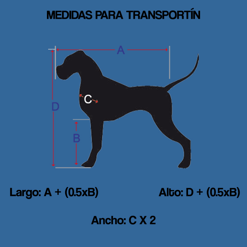 como-medir-a-tu-perro